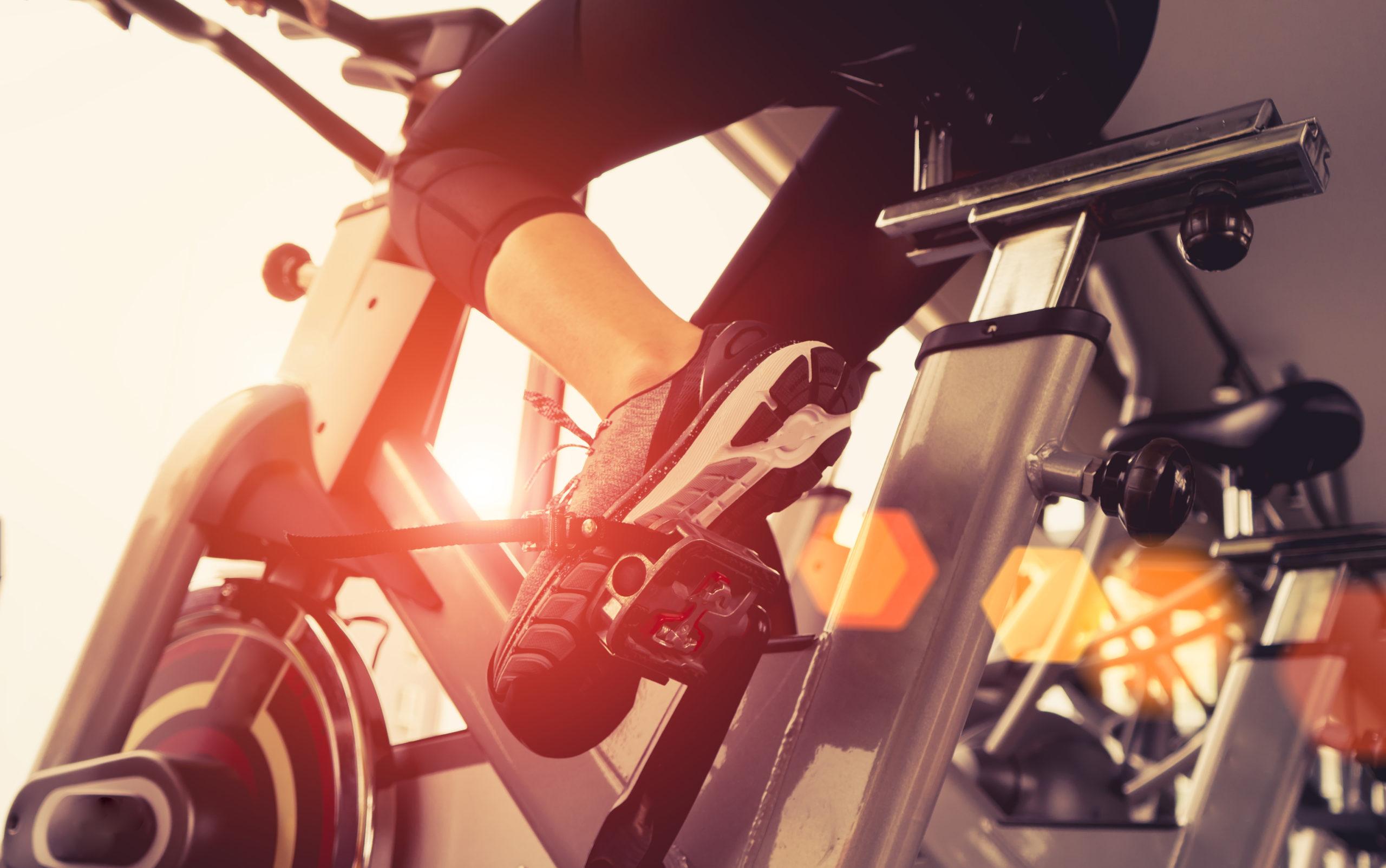 horizon ic7.9 indoor cycle review