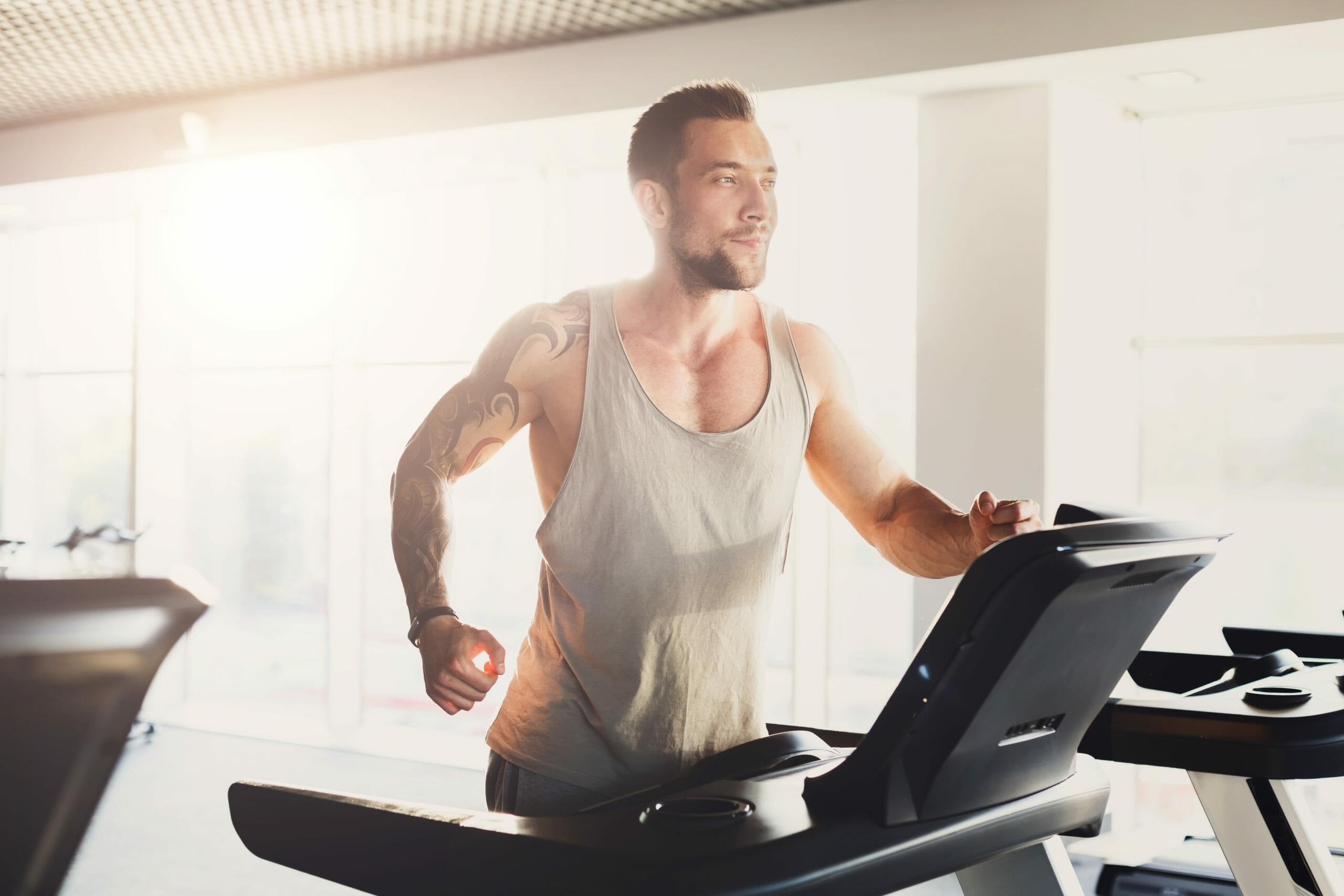 lifespan fitness tr5500i treadmill review