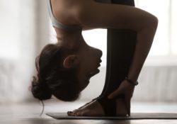lifespan sp1000 stretch partner review