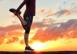lifespan sp1000 stretch partner pro review