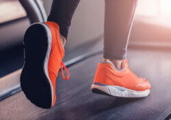 echelon stride treadmill review