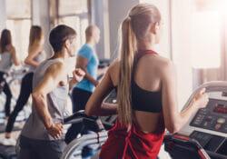 landice L8 LTD treadmill review